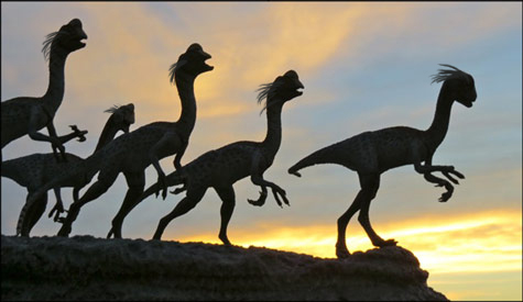 Oviraptor - Eggs and Babies